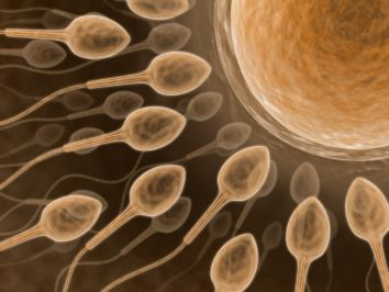 Delivery Man: 9 Sperm Donor Questions Youre Too